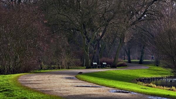 curve nel parco