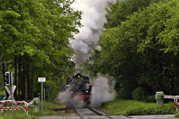 fumo treno veicolo mezzo di trasporto