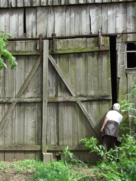donna legno curiosita curioso cancello portale