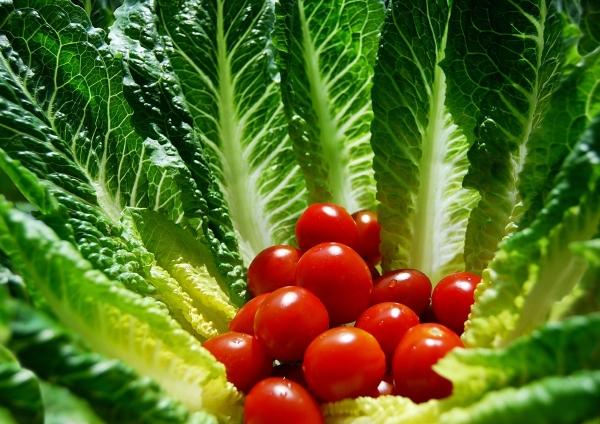 cibo salute biologico verdura pomodori insalata