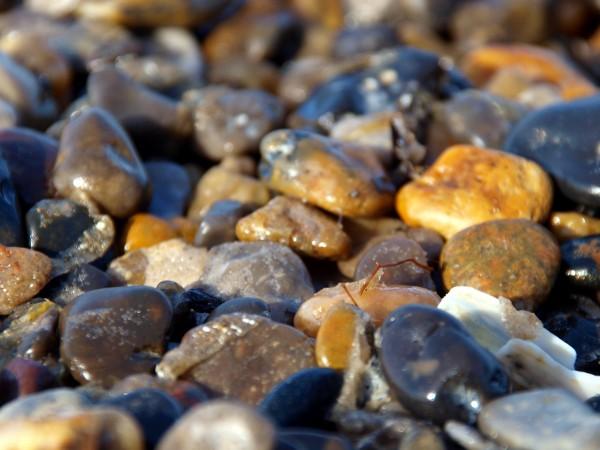un mare di sassi