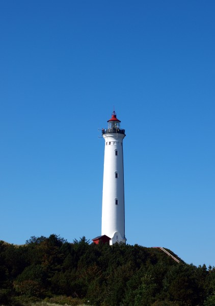 tutela dei monumenti navigazione visita turistica
