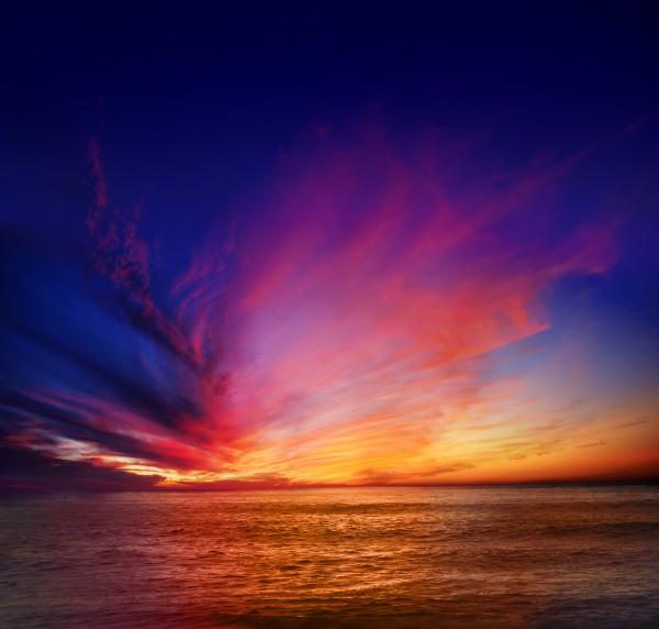 orizzonte tramonto california acqua salata mare