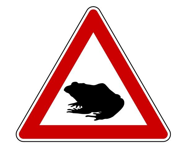 attenzione alla migrazione dei toad