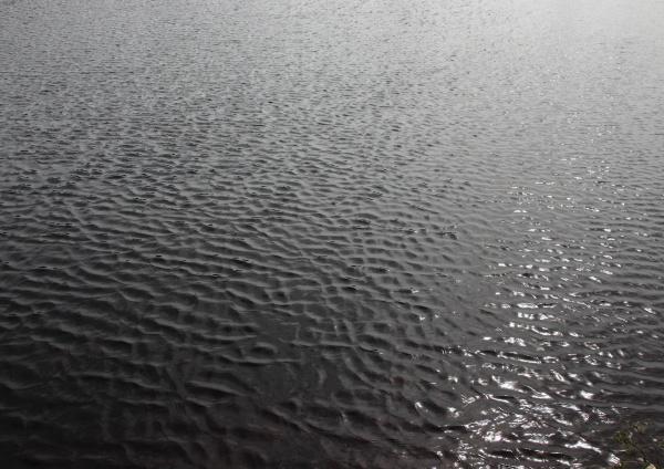 lago scuro con acqua e sfondo