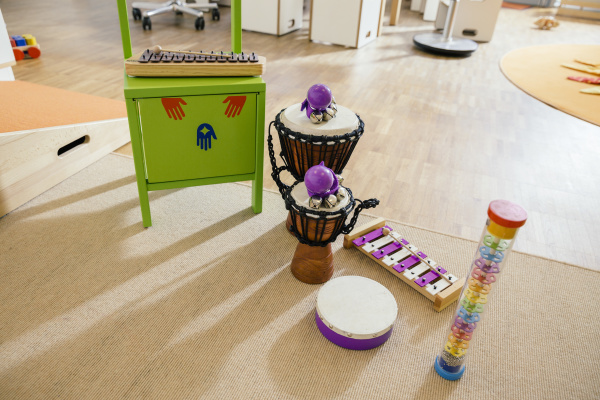 strumenti musicali allineati allasilo