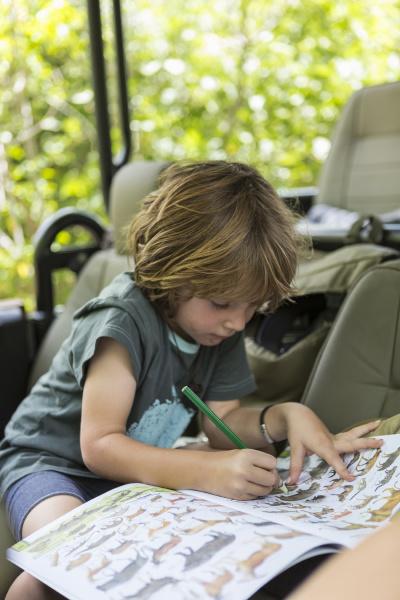 disegno bambino di cinque anni moremi