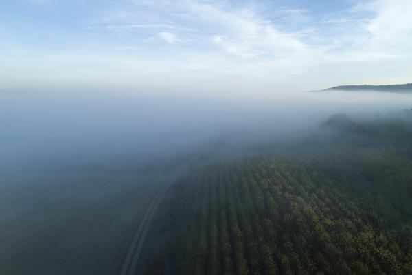 germania baviera vista drone delle alture