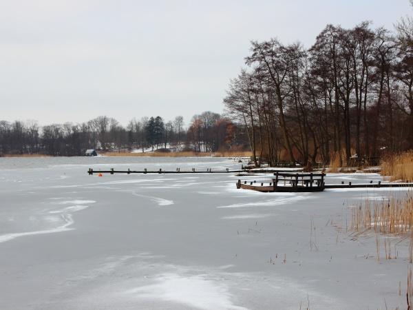lago invernale con acqua ghiacciata e