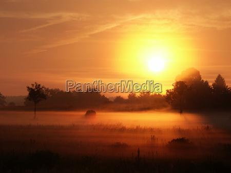 nebbia di mattina 03