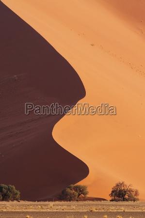 deserto namibia curva secco asciutto arido
