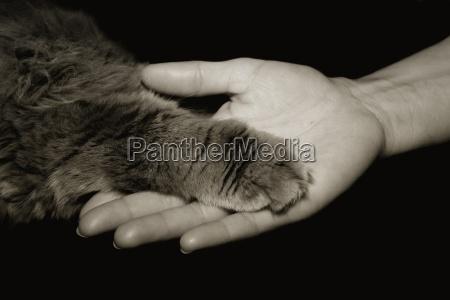 mano nella mano per tutta