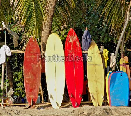 tavole da surf sulla spiaggia di