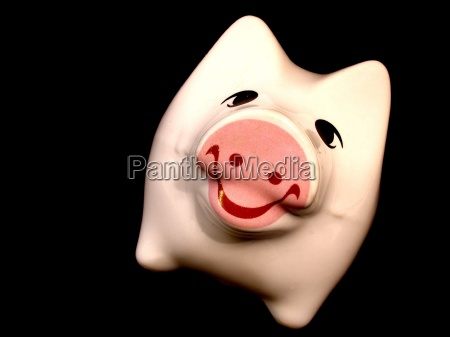 risata sorrisi porcellana maiali contento felice