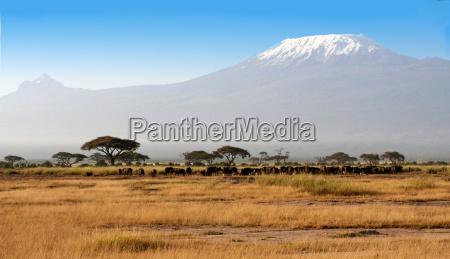 montagne parco nazionale africa kenia vulcani