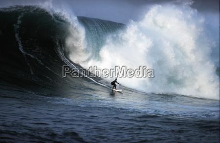 forza della natura onda surf limite