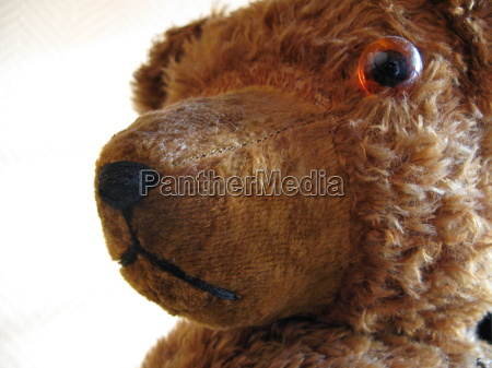 orso giocattolo teddy orsacchiotto