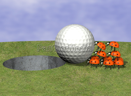 pallina da golf con coccinelle