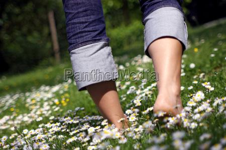 fiore fiori liberta pantaloni fiore di