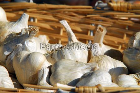 cestino dita dei piedi verdura aglio