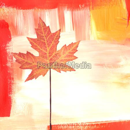 foglia pittura acero arancione colorare rosso