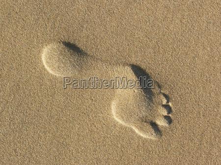 scalzo a piedi nudi traccia orma