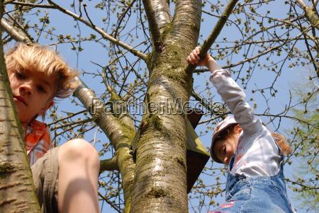 albero di ascensione dei bambini