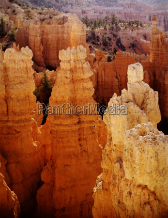 bryce canyon national park tower alba