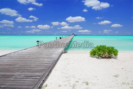 molo alle maldive