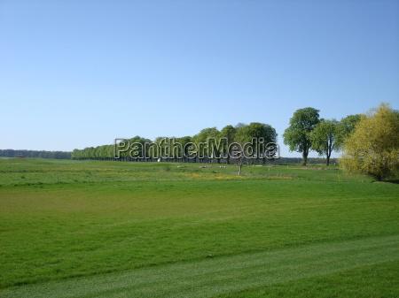 golfo mecklenburgvorpommern kaschow golfclub strelasund golfpark