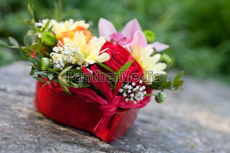 fiore fiori affezione simpatia festa della