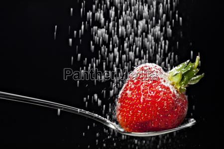 zucchero frutta cadere fragola bacca abbattere