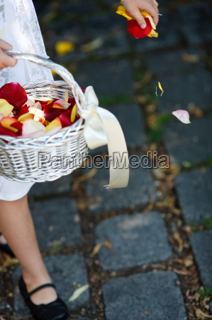 fiore fiori cestino distribuito spargere cospargere