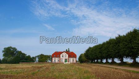 albero alberi acro casa colonica fattoria