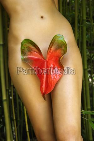 donna nuda in natura