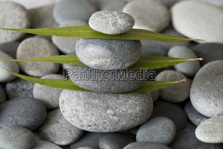 torretta e fogli di pietra