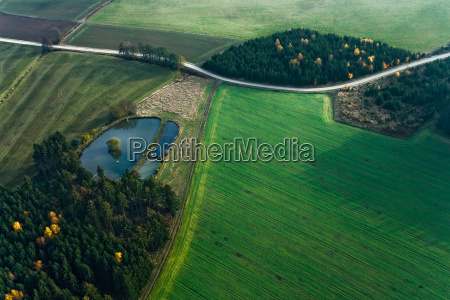aerial perspective tree trees meadows fresh