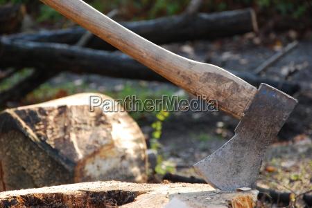 albero legno tronco ascia scure legna