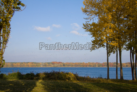 autumn on the river havel