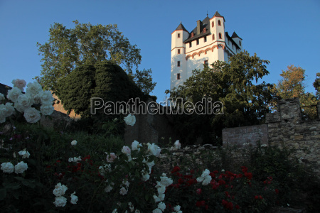 castle of eltville