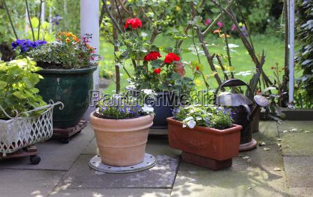 garden time flower pots terrace