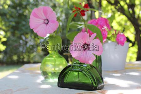 gardening flower accessories