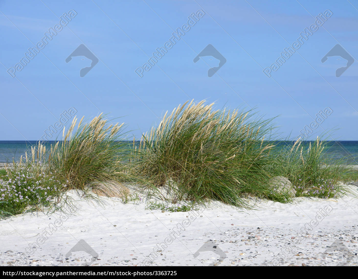 spiaggia - 3363725