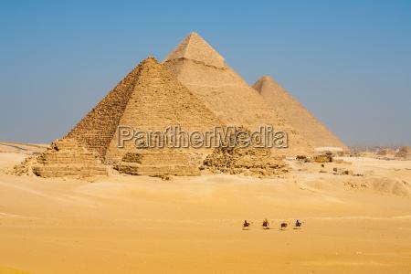 cammelli linea passeggiata piramidi tutti