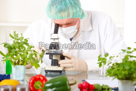 ricercatore che sostiene una verdura del