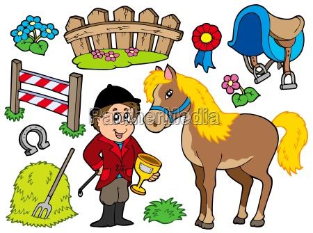 collezione di cavalli