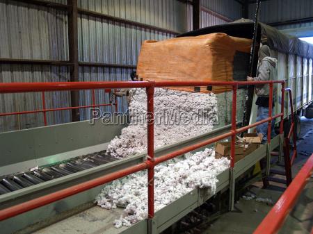 industria agricoltura mulino cotone modulo modulo