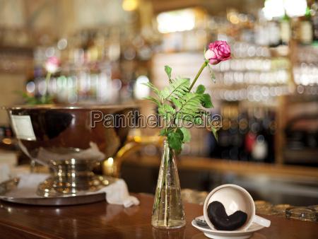 taverna bar fiore rosa orso cappuccino