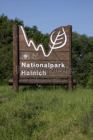 giungla foresta riserva naturale faggeta parco