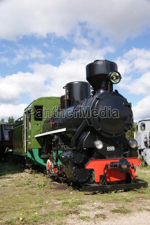 treno veicolo mezzo di trasporto verde